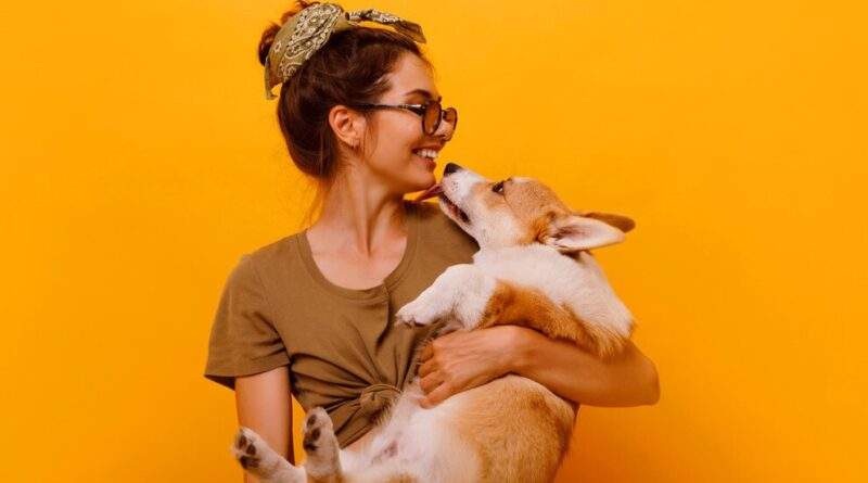 Top Pets in USA