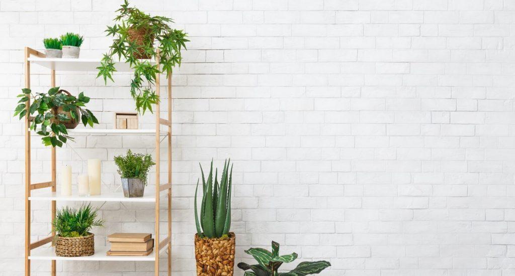 Best Decorative Wall
