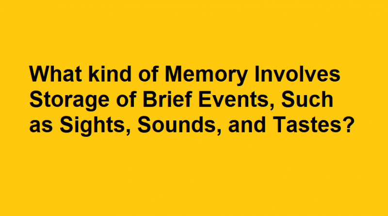 what kind of memory involves storage of brief events, such as sights, sounds, and tastes?