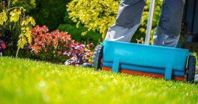 Lawn Fertilization Treatments